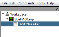 SVM in Workspace.png