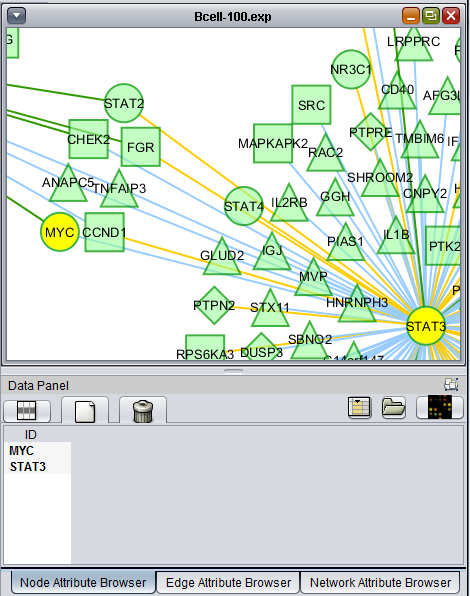 Cytoscape nodes selected v2.2.png
