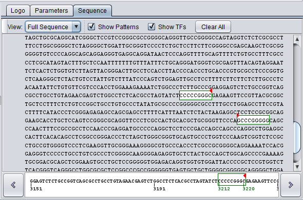 Promoter Result CDH2 Sequence View Full.png